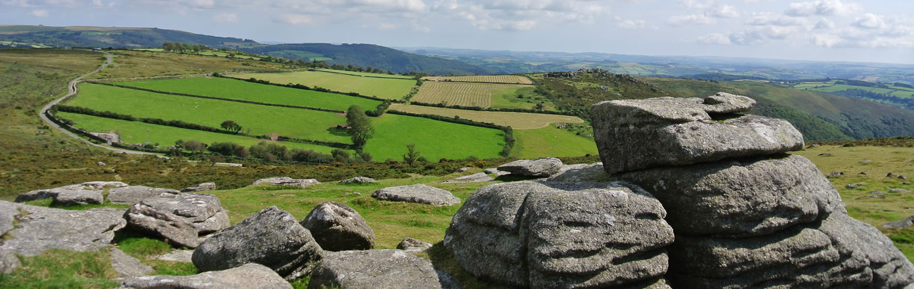 Stunning Views of Dartmoor Whem Llama Walking