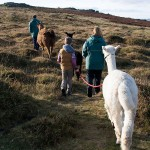 Family Trek on Dartmoor
