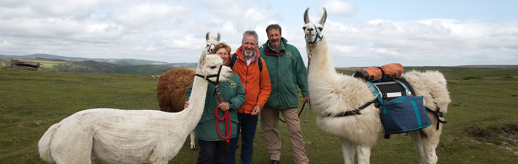 Griff Rhys Jones With Dartmoor Llama Walks