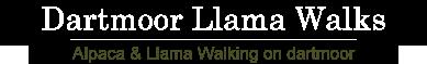Dartmoor Llama Walks